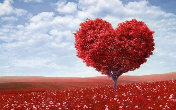 Медитация любящей доброты (Метта медитация)