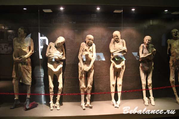Музей мумий. Гуанахуато, Мексика.