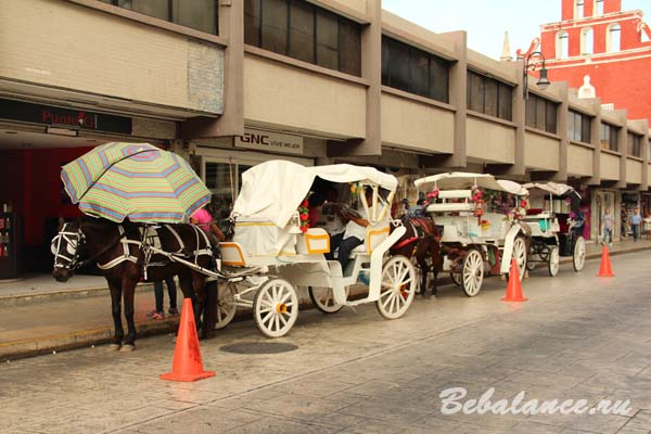 Конный экипаж, Мерида, Мексика.