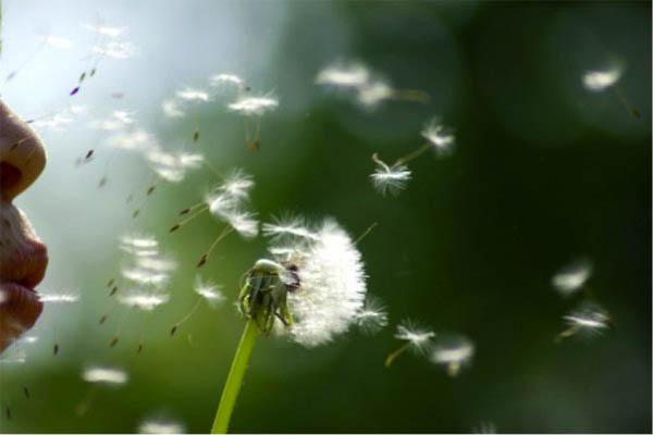 Медитация на дыхание.